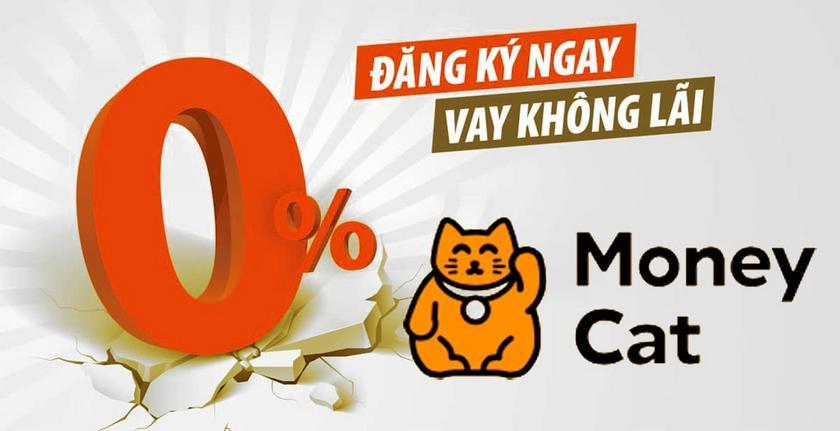 Money-Cat-lua-dao